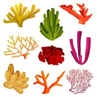 Кораллы или элементы коралловых рифов, подводная дикая природа. тропические кораллы иконки для украшения баннера.