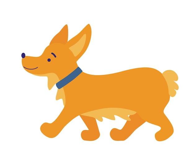 コーギー犬。かわいいフレンドリーなウェルシュコーギー子犬の散歩。かわいい犬種のウェルシュコーギ。ペット、動物、犬のテーマデザイン要素。フラットベクトルイラスト。
