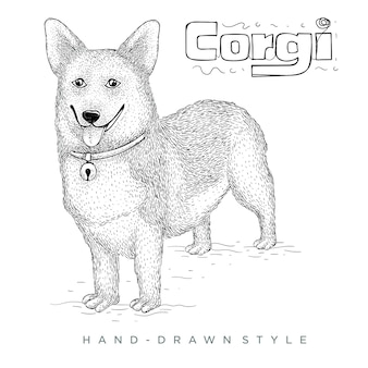 Corgi 개 손으로 그린 동물 그림