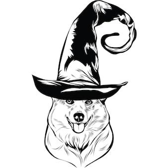 Собака корги в шляпе ведьмы на хэллоуин