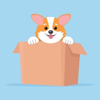 코기 개. 상자에 강아지, 플랫 스타일의 귀여운 일러스트