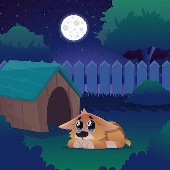 Corgi with tears in eyes lies near his house on backyard.