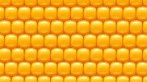 トウモロコシの背景