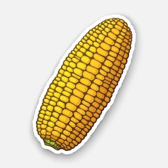Corn cob without leaves healthy vegetarian food ingredient for salad vector illustration
