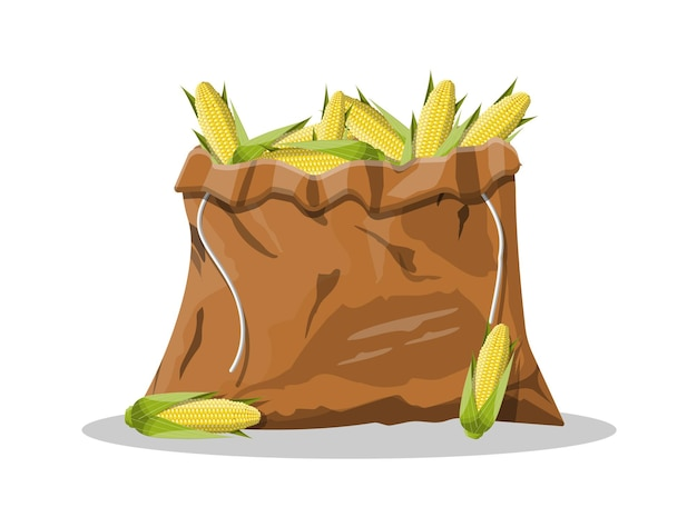 Corncobs with yellow corns and green leaves in canvas bag.