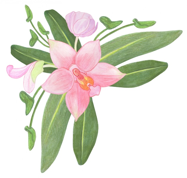 Corner composition with watercolor pink orchid flowers and leaves