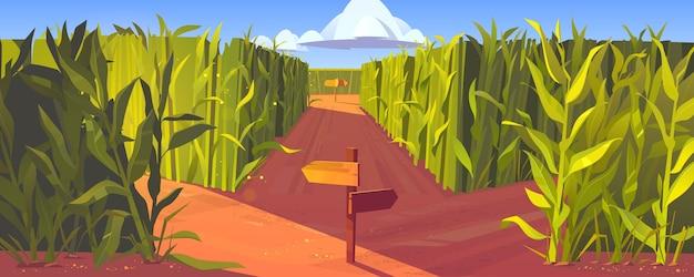 木製の道路ポインターと高い緑の植物の茎を持つトウモロコシ畑