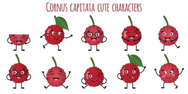 Cornus capitata フルーツかわいい面白い陽気なキャラクターは、さまざまなポーズや感情を持っています。天然ビタミン抗酸化デトックス フード コレクション。漫画の孤立したイラスト。