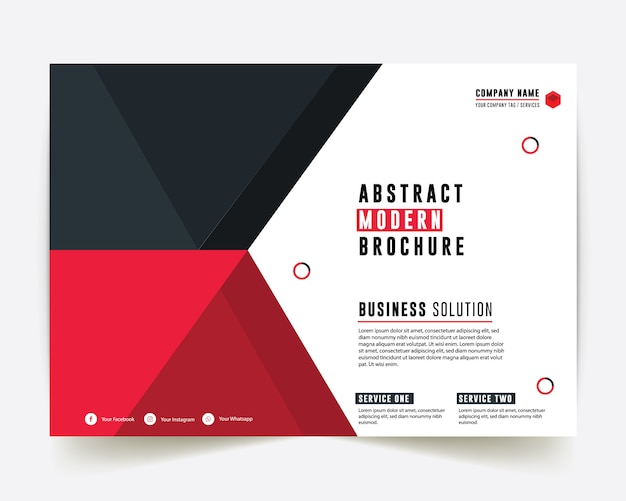 Corporate style red and blue color business brochure annual report