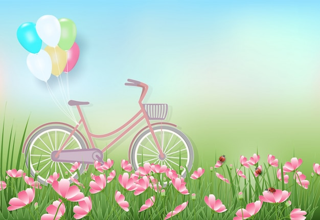 Cosmos flowers field and bicycle spring illustration