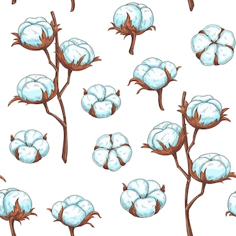 Cotton flowers seamless pattern.