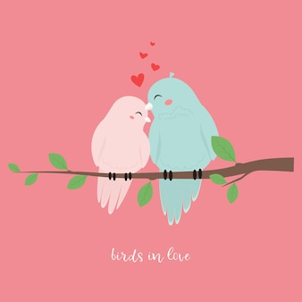 Couple birds in love, sitting on a branch.