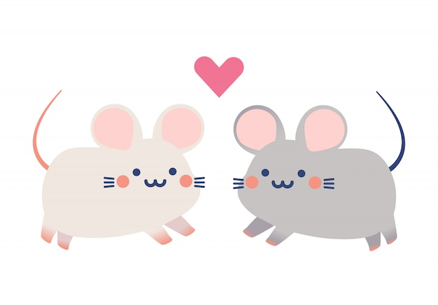 Couple cute tiny rats vector