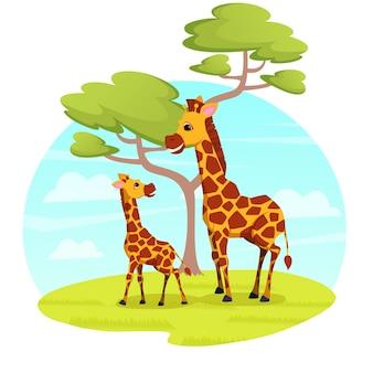 Пара жирафов, мама и малыш, отдыхают