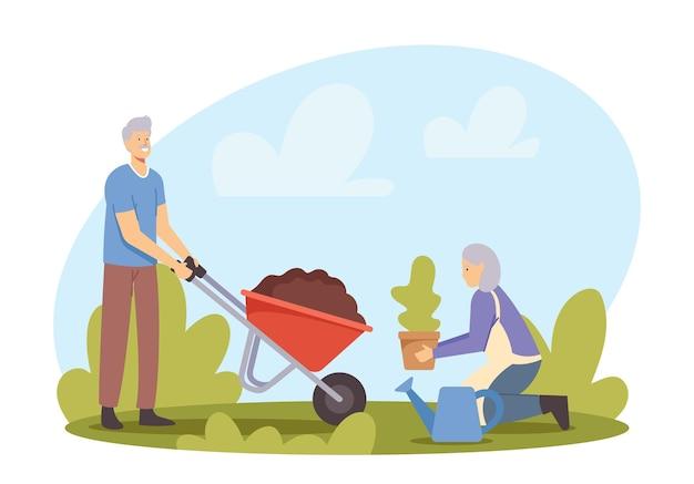 나무를 심는 남성 여성 연금 수급자의 커플. 수레에 흙을 든 노인, 여자 홀드 공장