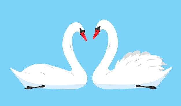 青い背景で隔離の白い白鳥の鳥のアイコンのカップル