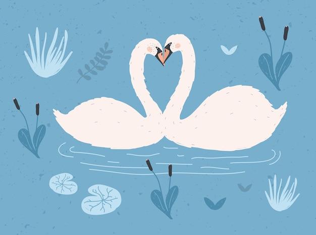 Пара белых лебедей, плавающих вместе в воде пруда или озера среди растений