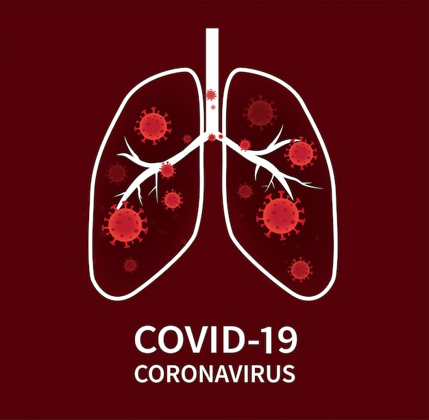 Коронавирус covid-19 распространяется в клетки дыхательных путей и легких.
