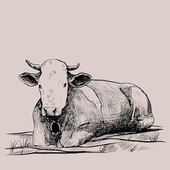 グラフィックスタイルで描かれた牛の手描きポスターのビンテージベクトル彫刻イラスト