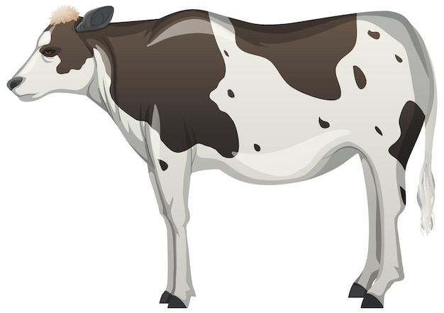 白い背景の上の牛や牛の農場の動物