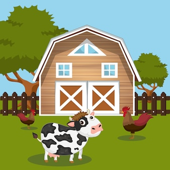 Cow and roosters in farmyard