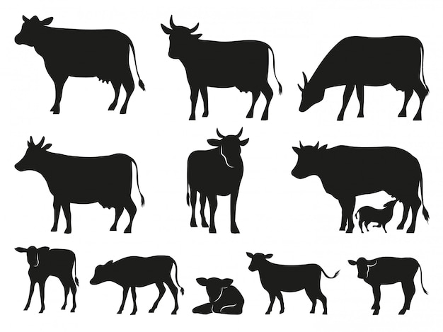 牛のシルエット。黒い牛と子牛の哺乳類動物のアイコンを設定