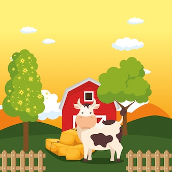 Cows in the farm scene