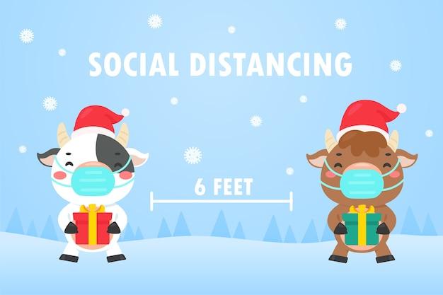 冬のクリスマスの日には、牛はギフトボックスを持って社交スペースを離れます。