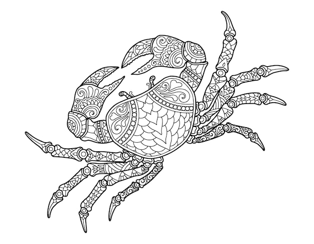 Crab coloring page design clear background