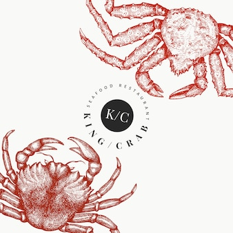 Crab design template. hand drawn   seafood illustration. engraved style crustacean.