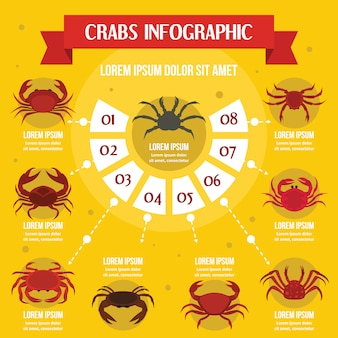 Crabs infographic banner concept. flat illustration of crabs infographic vector poster concept for web