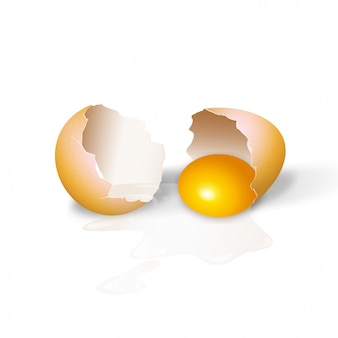 Cracked chicken eggs realistic 3d illustration