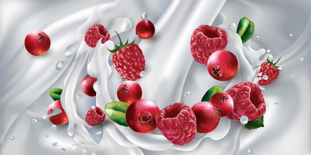 Cranberries and raspberries in a splash from a stream of pouring milk. realistic illustration.