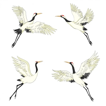 クレーン。飛行中の鳥。デザイン要素。ベクター。