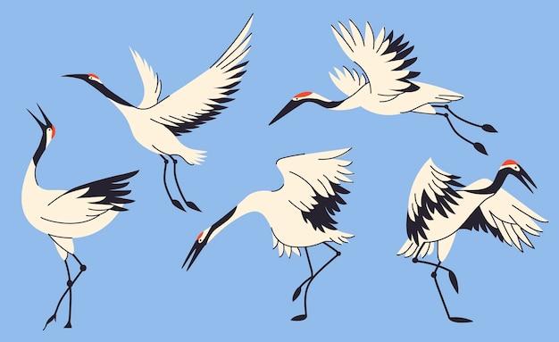 漫画のデザインのツル鳥コレクション