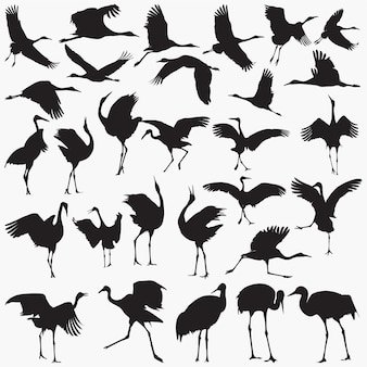 Cranes silhouettes