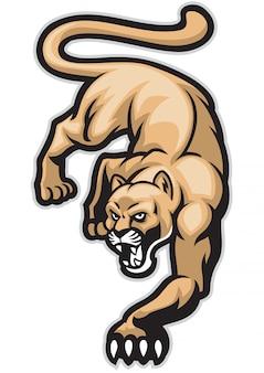 Crawling cougar mountain lion pose