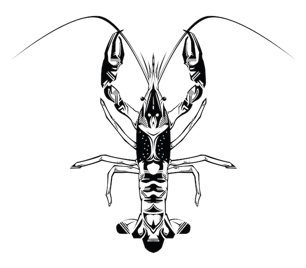 Crayfish abstract vector