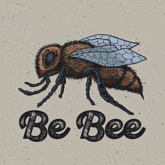 Creative animal poster with ink hand drawn yellow bee in the centre illustration