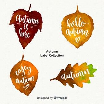 Creative autumn label collection