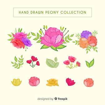 牡丹の花のクリエイティブコレクション
