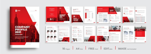 Creative company profile design with red color shapes