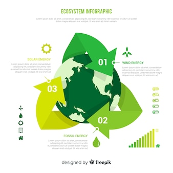 Creative ecosystem infographics concept