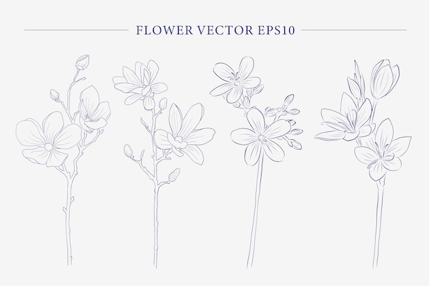 Creative  flower collection