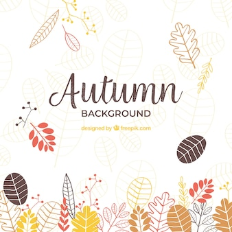 Creative hand drawn autumn background