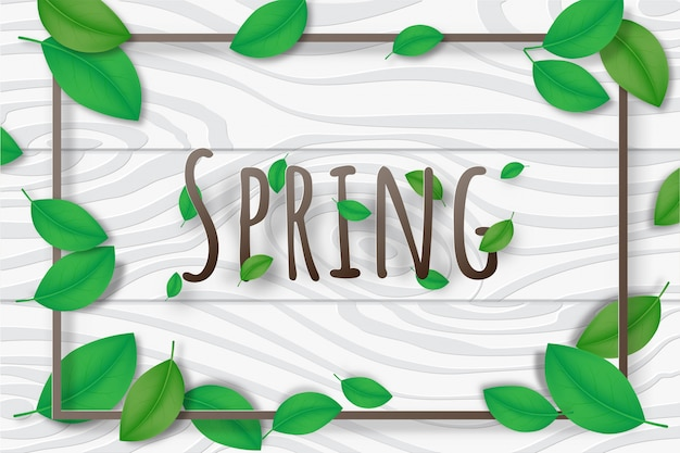 Creative illustration spring season background decorative.
