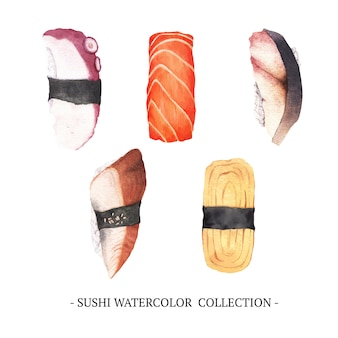 Creative isolated  watercolor sushi