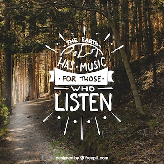 Creative lettering and quote design on forest background