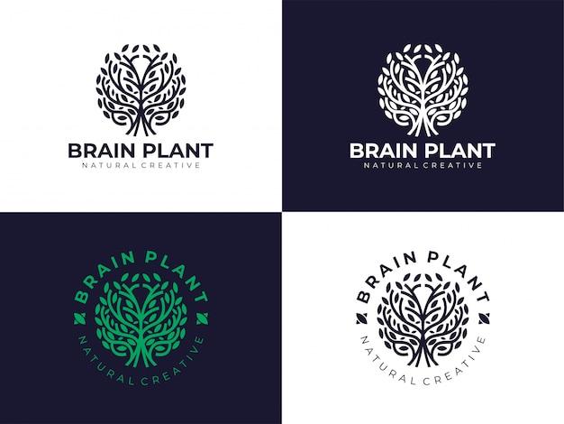 창조적 인 자연 두뇌 식물 나무 생태 로고 디자인 영감