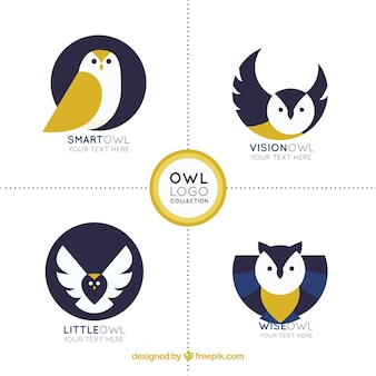 Creative owl logo collection